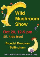 2013-NMA-mushroom-show
